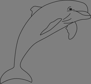 Delfin Kolorowanka Edukacyjne Bajki Do Czytania