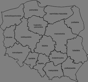 Mapa Polski Wektorowa Z Podziałem Na Województwa Edukacyjne Bajki
